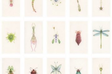 Τα Έντομα του Hiroshi Shinno